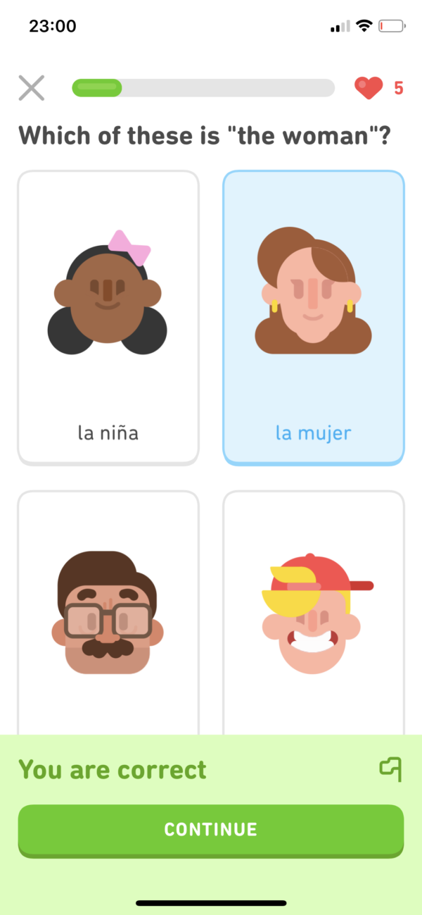 Duolingo Correct screenshot