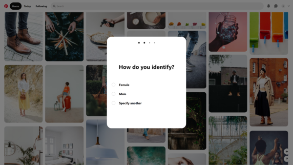 Pinterest How do you identify? screenshot