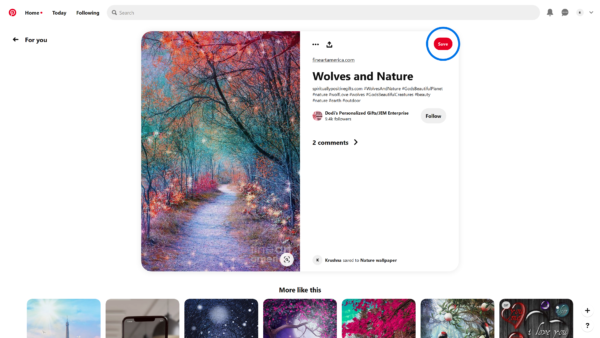 Pinterest Detail view screenshot
